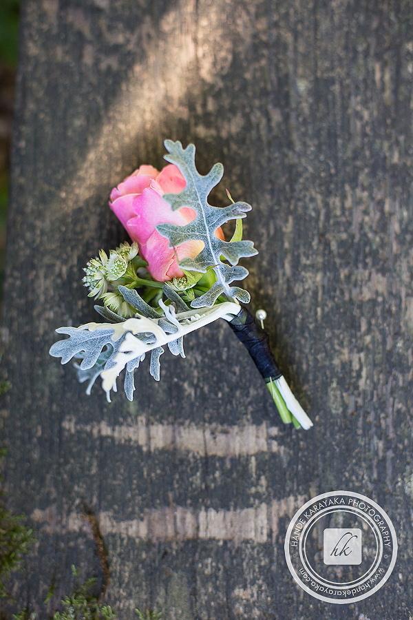 Damat yaka çiçeği