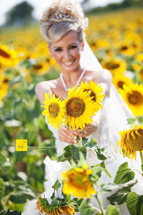 Kırklareli Ay çiçek tarlararında düğün fotoğrafları